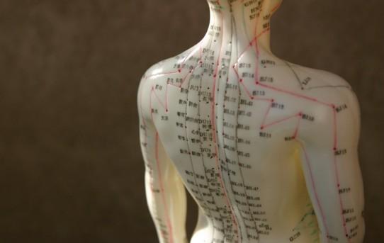 acupuncture – Zenki Shiatsu